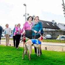 Senator Fidelma Healy Eames is launching her independent campaign for a Dáil Seat in Galway West/South Mayo with a 'Night at the Dogs'. The event will take place Saturday 17th October at Galway Greyhound Stadium. Photo by Darius Ivan www.divmedia.ie