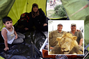 Syrian migrant family take in Walter Palmer, the dentist who shot Cecil the lion