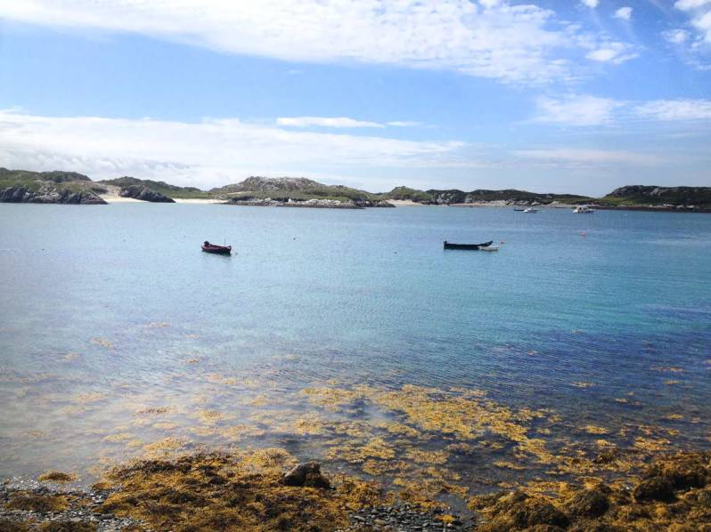 The-Island-Bay