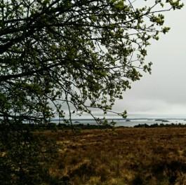 Lough Corrib views