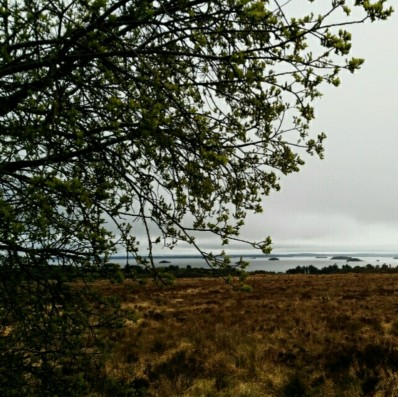 Lough Corrib views