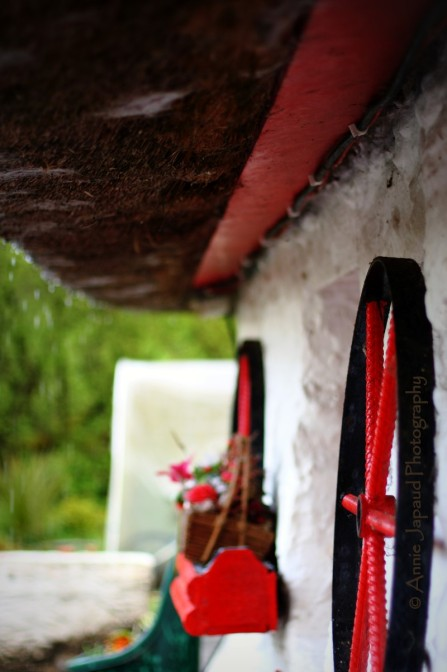 thatch house details