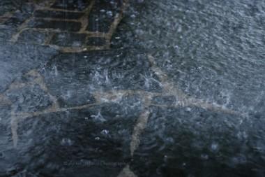 rain falling in a puddle