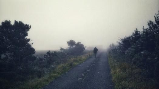 2017-0925-fog-and-cobwebs-c2a9-annie-japaud-photography-11.jpg